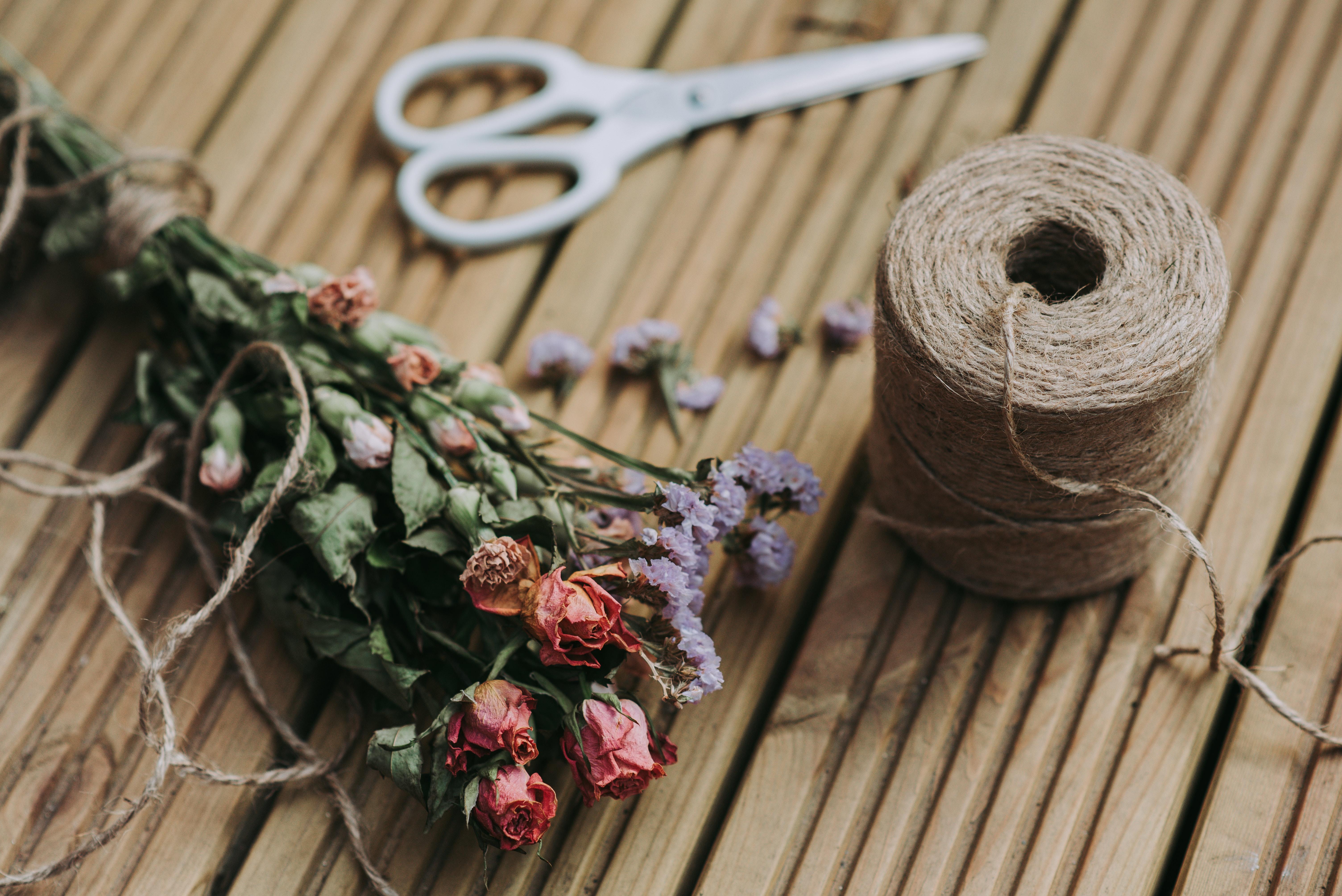 color-decoration-dried-flowers-1166416
