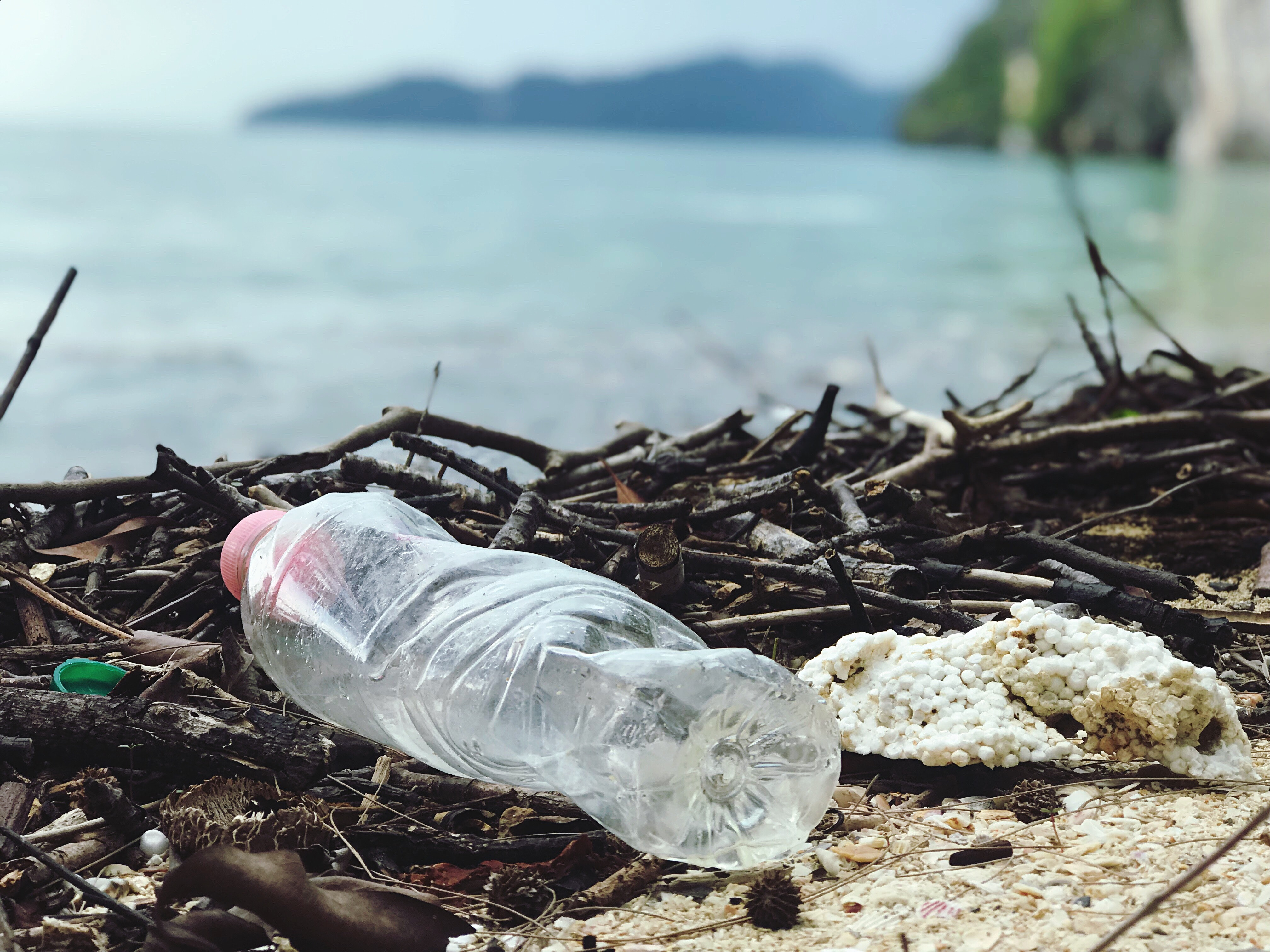 Single use plastics are a danger to the environment