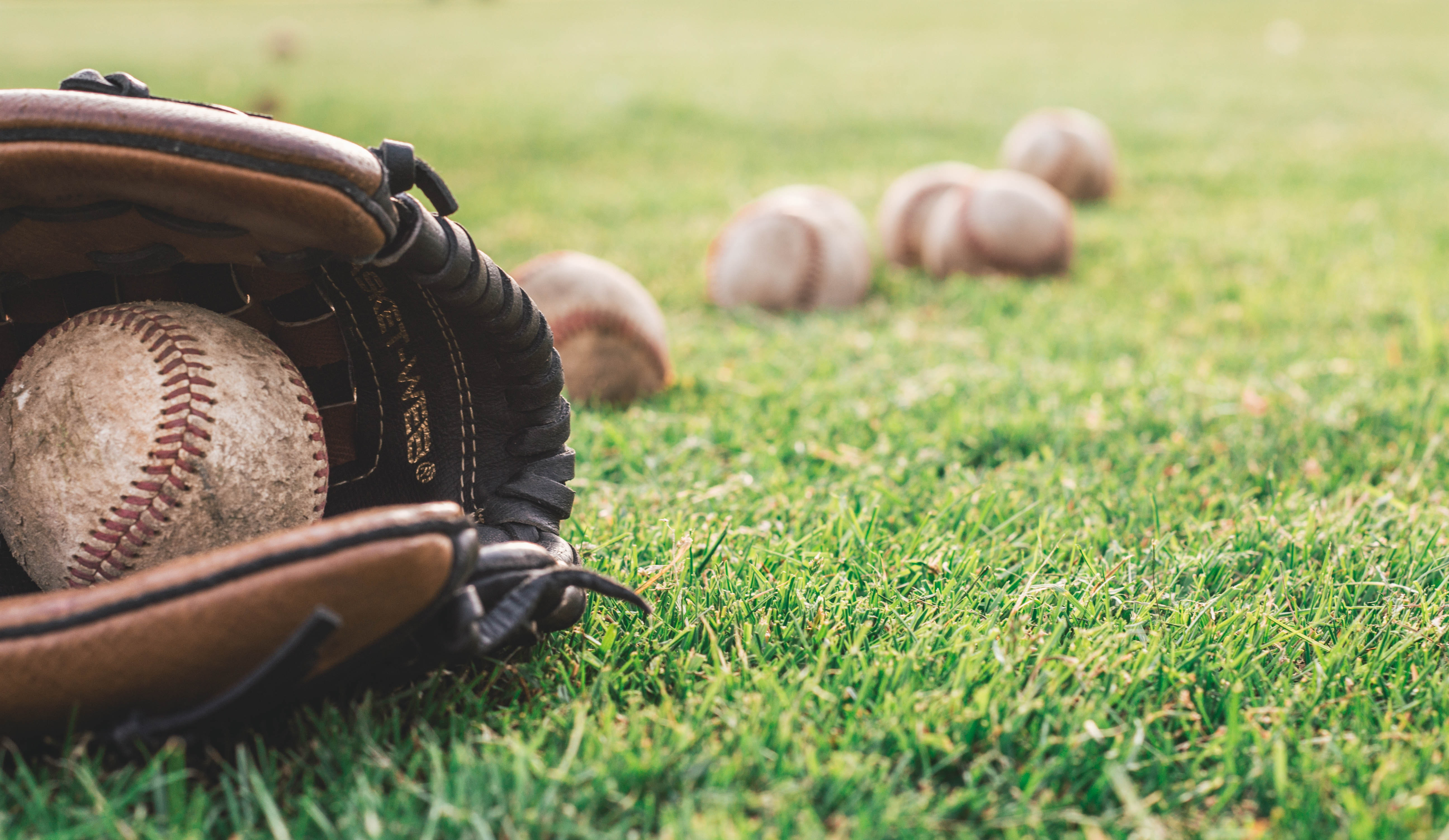 Enjoy baseball at San Leandro Ball Park