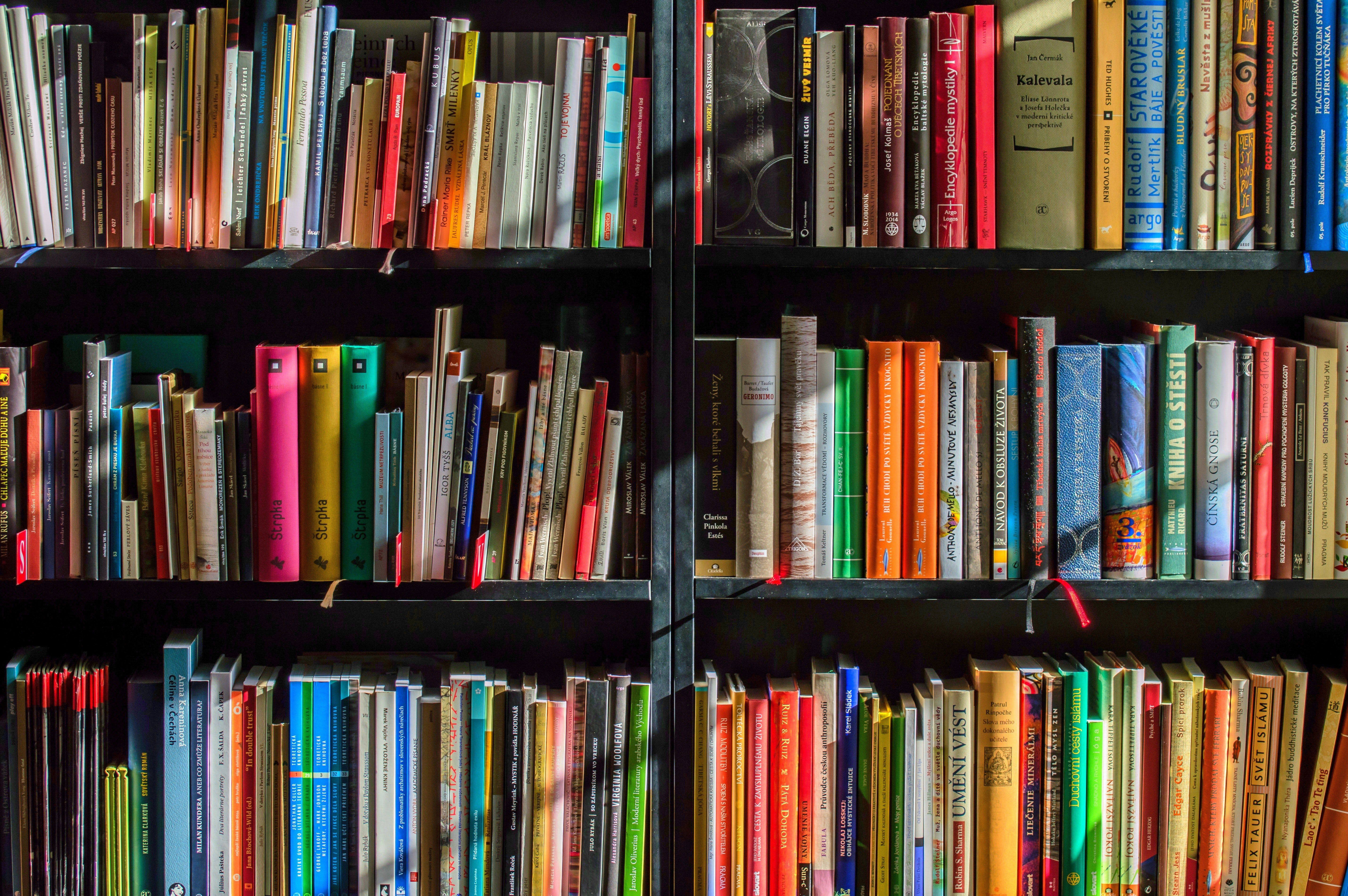 Host a Book Borrowing Party